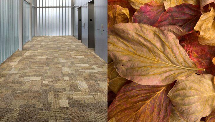floor-leaf-crop